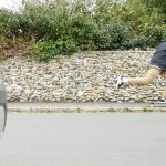 Adidas Silas Shoes - Skate Pharm Skate Shop